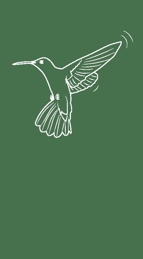 Colibri Mobility Tech Green