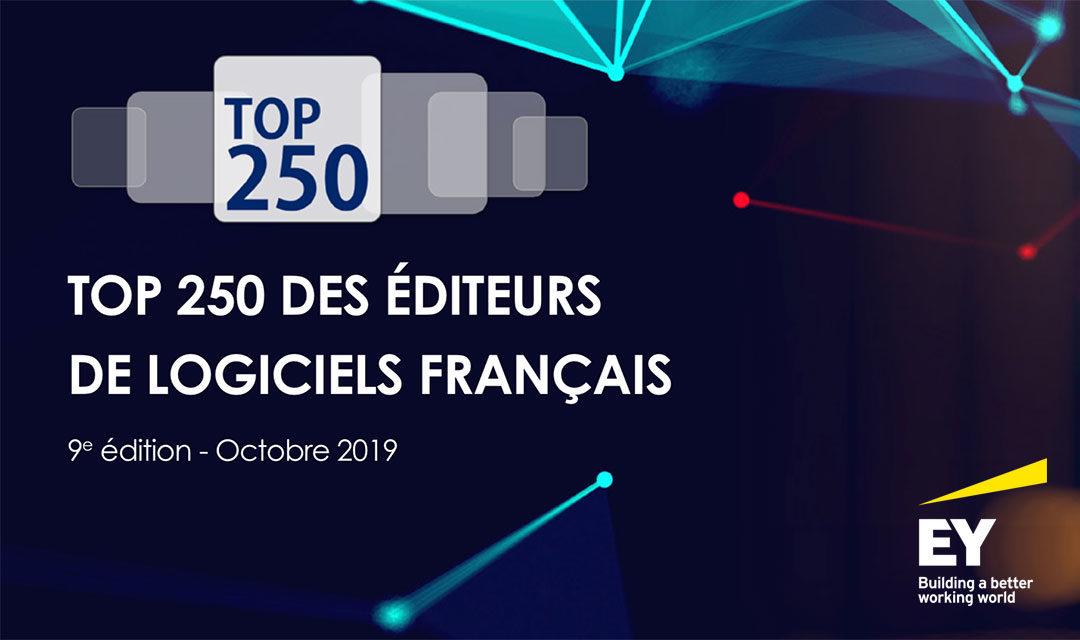 Mobility Tech Green dans le top 250 des éditeurs de logiciels français